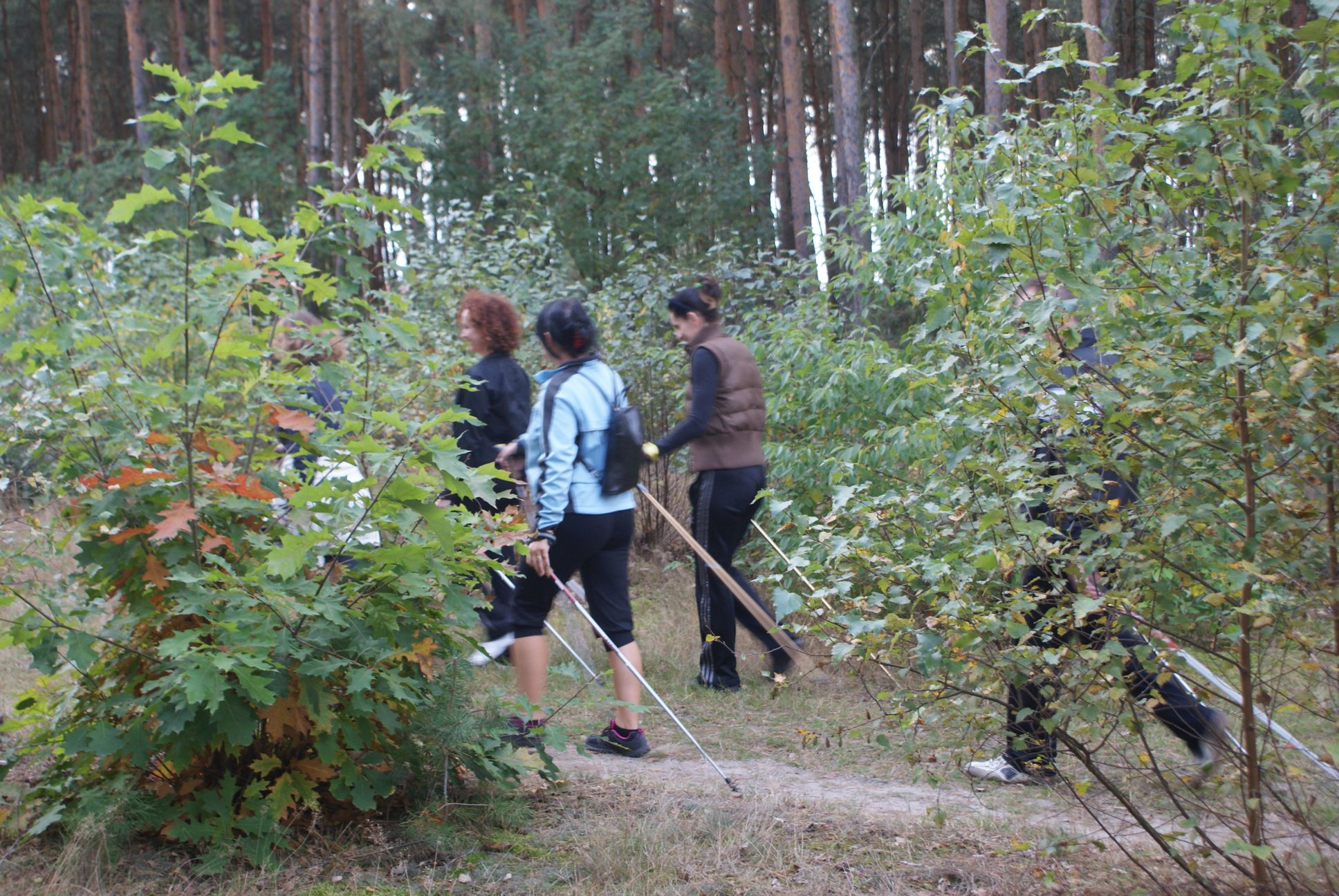 Nordic Walking fitness klub pleszew active fit 5
